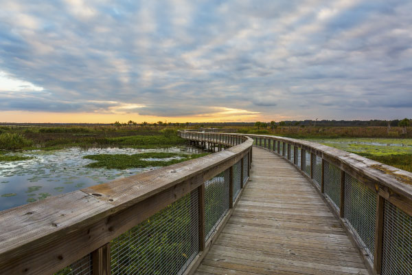 Gainesville Scenic Nature